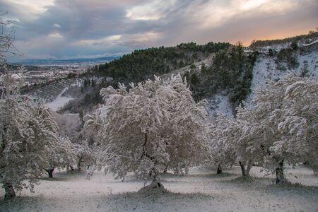 Fantastic winter landscape at sunset