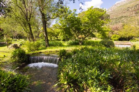 Waterfall in the Ninfa garden, Lazio, Italy Stock Photo