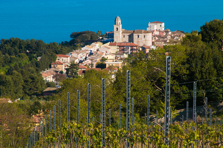 Beautiful view of Sirolo town from the vineyard