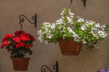 Two vase of flowers Stock Photo