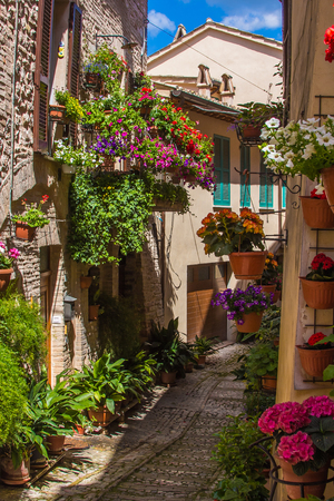 spello: Wonderful and romantic alley with flowers, Spello Stock Photo