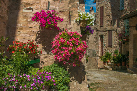Flowering alley in the medieval center of Spello village, Umbria