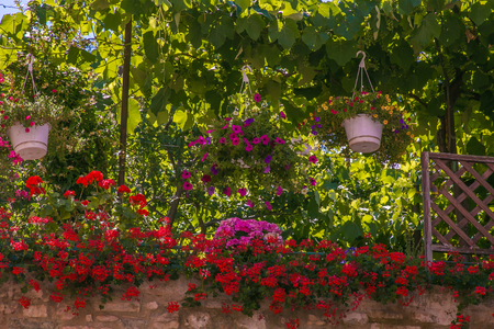 Beautiful garden with flowers in the center of Spello