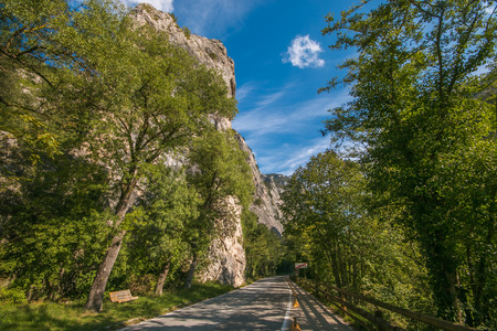 Flaminia road in the Furlo gorge, Marche