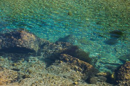 Transparent water of Nera river Zdjęcie Seryjne