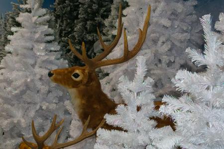 Reindeer of Santa Claus on white Christmas tree Stock Photo
