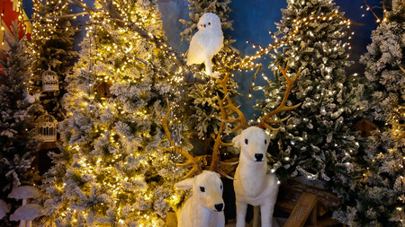 Christmas trees with reindeers and owl