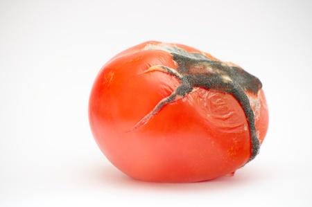 unhealthful: Moldy tomatoes