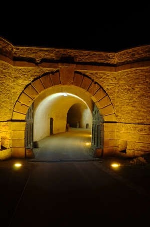 gratings: Fortress Ehrenbreitstein by night Editorial