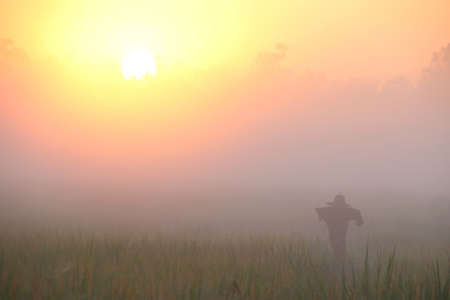 Sunrise and Fog in the morning.