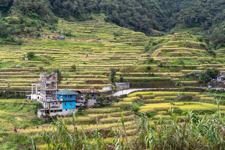 Beautiful landscape at Banaue rice terrace, Philippines