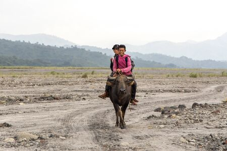 Sep 8, 2019 People riding buffaloes in Mt. Pinatubo, Capas, Philippines Editorial