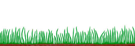 green grass made from plasticine white background