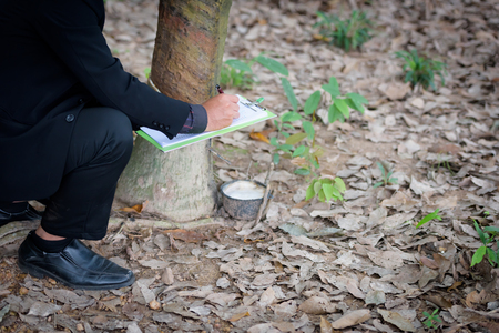 Plant researchers are checking latex from rubber trees.