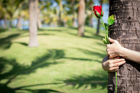 Happy young woman with holding roses in the coconut park. Stock Photo