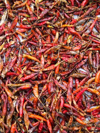 chilli dried photo