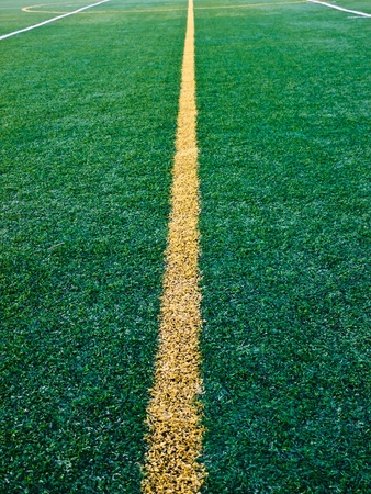 Line on astroturf photo