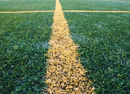 Line on astroturf Stock Photo - 11547794