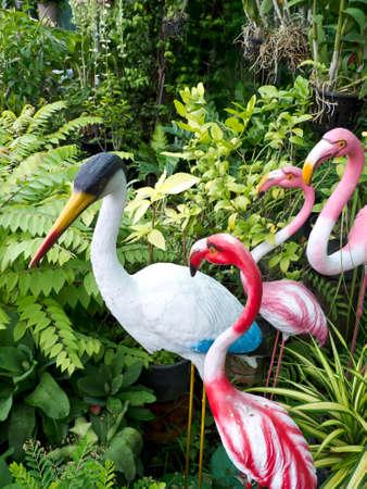 pink flamingo: flamingo