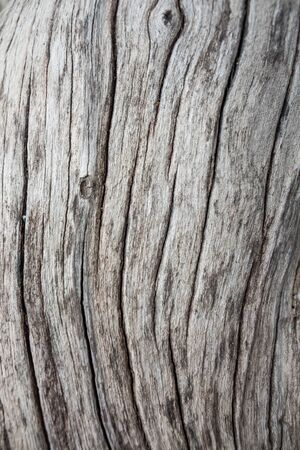 screen savers: wood texture