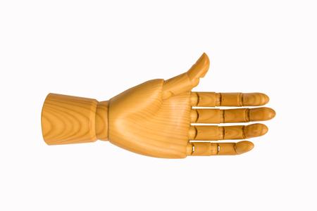 wood hand model