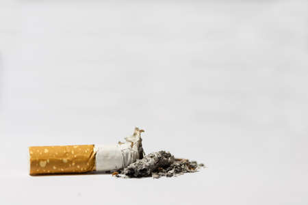 Single cigarette butt with ash on white background Stock Photo - 18414248