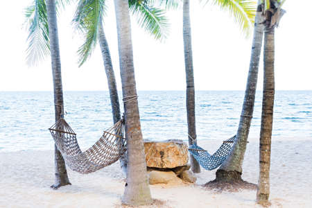 Two hammock between palm trees on tropical beach  photo