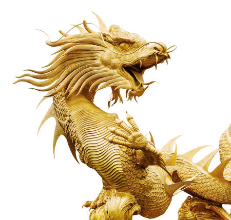dragon chinois: Golden Giant Dragon chinois sur fond isolat