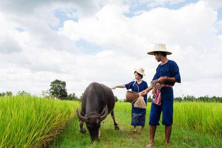 Couple Thai Farmer with buffalo  photo