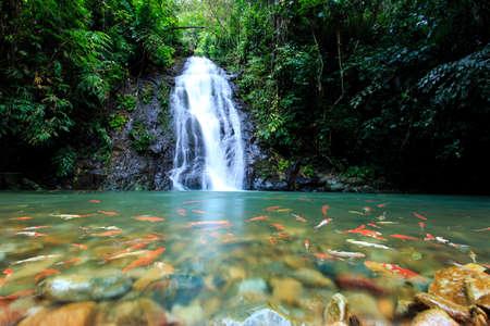 Deep forest Waterfall in Nong Khai, Thailand