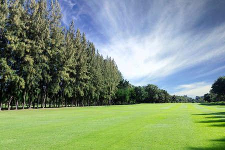 Green golf field photo