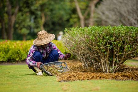 flower nursery: Woman with gardening tool working in her backyard garden