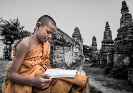 novice: Novice Monk in Thailand
