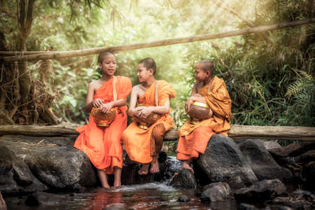 Novice Monk in Thailand Stock Photo - 43289322