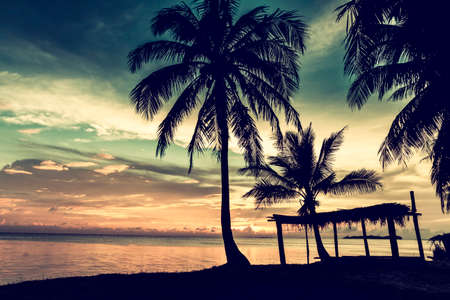 Tropical beach with coconut palm, vintage color