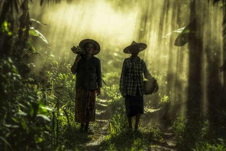 Azjatyckie stara kobieta pracuje w dżungli