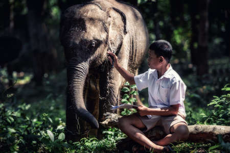 poor: Student little asian boy with him elephant, countryside in Thailand
