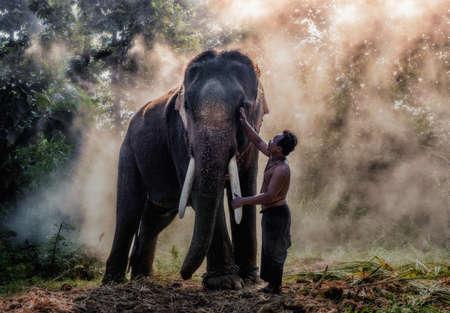 mahout: Mahout @ Surin, Thailand