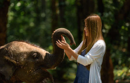 heavy heart: Woman touch elephant with all her heart in Thailand. Stock Photo