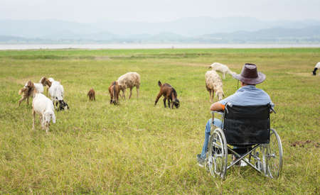 Handicapped man on a wheelchair alone in farm 免版税图像