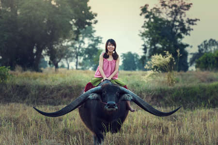 familias felices: Mujer asiática (tailandés) agricultor con un búfalo en el campo Foto de archivo