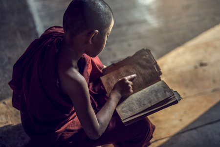 buddhist's: Young Buddhist novice monk reading and study in monastery, Myanmar