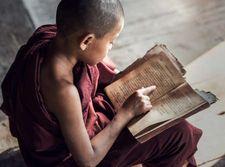 Young Buddhist novice monk reading and study in monastery, Myanmar