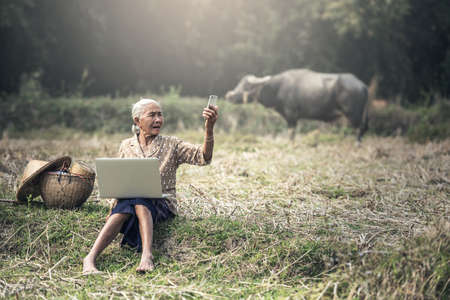 Old woman using a laptop and telephone outdoor Stock Photo