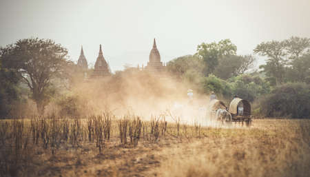 cart road: Burmese rural man driving wooden cart with hay on dusty road drawn