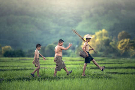 Fishing Boy in Rice Field