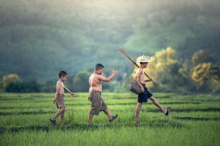 Pesca del muchacho en el campo del arroz Foto de archivo - 62433012