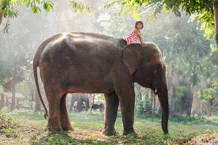 Child girl riding on baby elephant