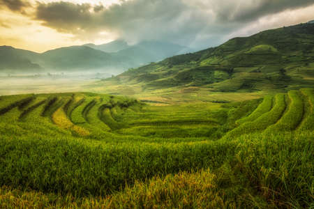 Rice fields on terraced of Mu Cang Chai, YenBai, Vietnam. Rice fields prepare the harvest at Northwest Vietnam.Vietnam landscapes. Stock Photo