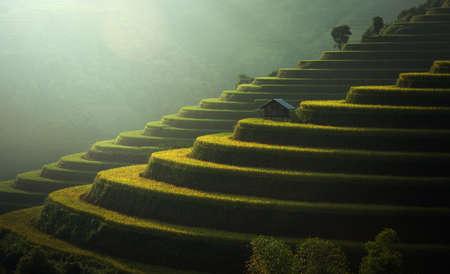 Rice fields Mu Cang Chai, Vietnam Stock Photo